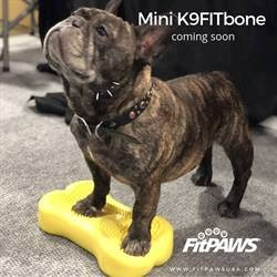 FitPAWS mini bein 2 pk